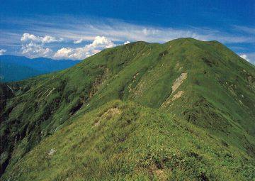 明日は山の日です。